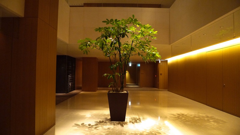 HYATT REGENCY KYOTO DELUXE KING 25