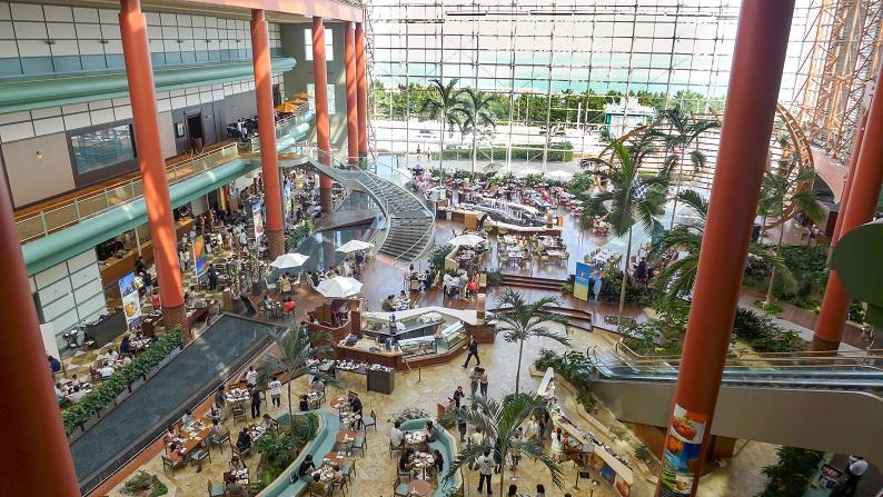 Hilton Seahawk 2013-08 37
