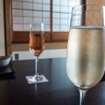 Kyoto endo  201311 13