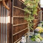 Kyoto endo  201311 4