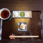 Kyoto endo  201311 7