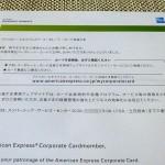 AMEX CORPORATE 201312 3