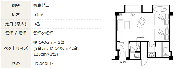 Executive Twin Floor Plan 1