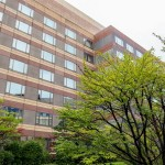 GRAND HYATT Fukuoka Diplomat Suite 201409 1