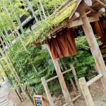 yufuin-kosumosu 201410 11