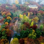 Hyatt Regency Tokyo deluxe Twin 201411 37