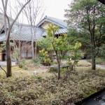 Santokan Yamamurasaki 201412 12