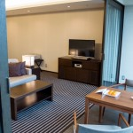 HYATT REGENCY HAKONE Deluxe Twin 201502 12