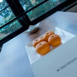 HYATT REGENCY HAKONE Deluxe Twin 201502 15