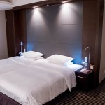 HYATT REGENCY HAKONE Deluxe Twin 201502 40