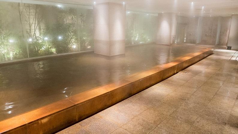 Hyatt Regency Hakone 201502 27