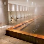 Hyatt Regency Hakone 201502 28
