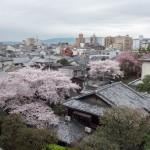 Kyoto Brightonhotel Executive Twin 201504 34