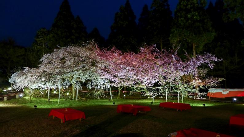 amex kyoto daigoji ivent 201504 17