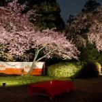 amex kyoto daigoji ivent 201504 18