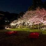 amex kyoto daigoji ivent 201504 19