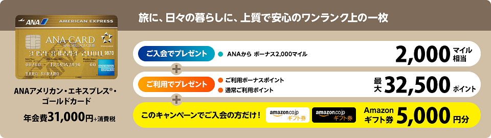 ana-amex-gold-amazon-campaign-201610